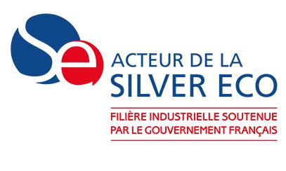 Silver Eco Logo